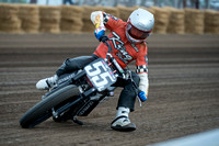 AMA Flat Track 2014: Springfield Mile MAY 25